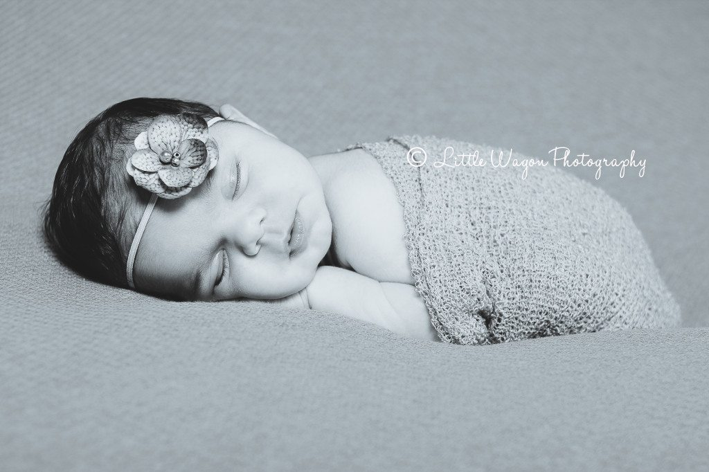 ottawa newborn photography
