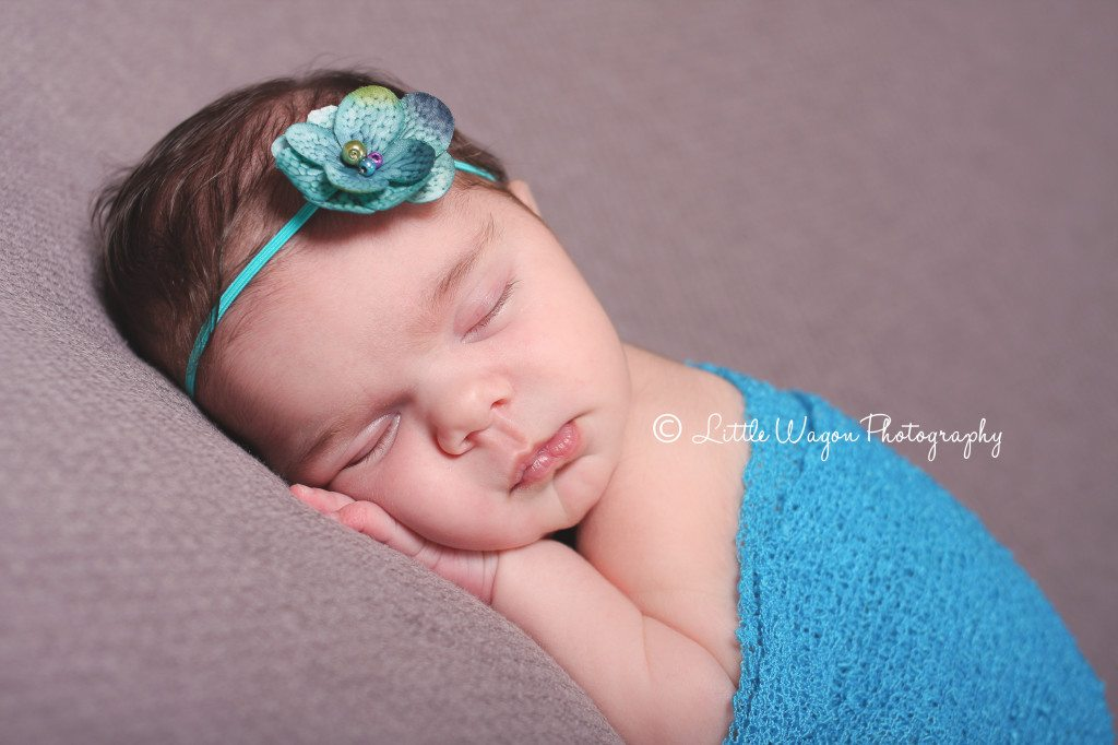 newborn photographers in ottawa
