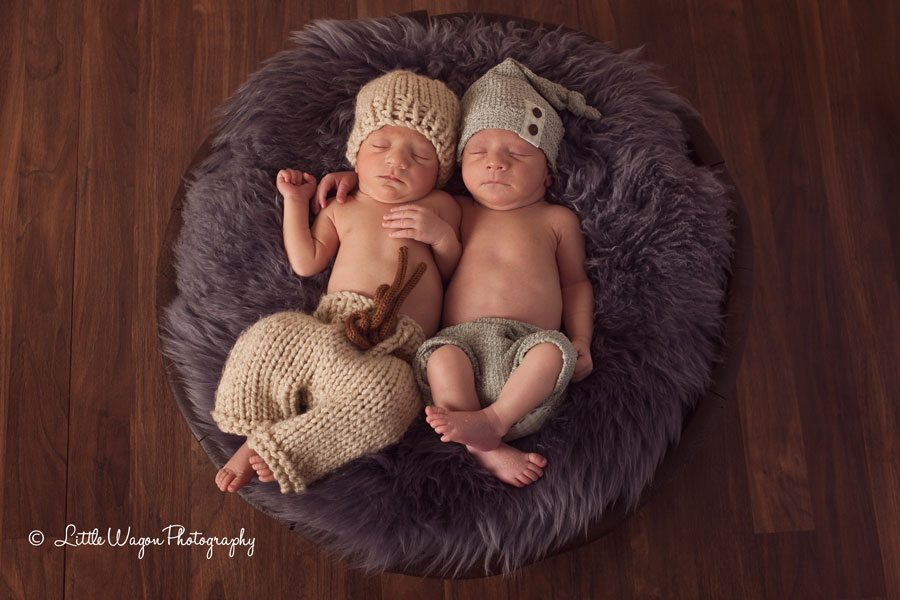 twin newborn photography ottawa