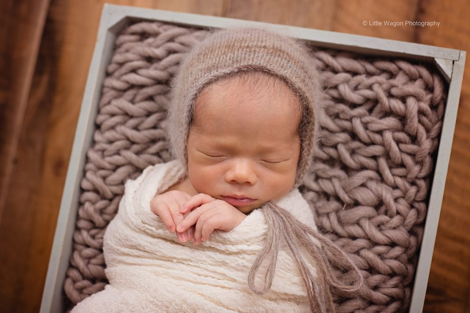 best newborn photographer Ottawa