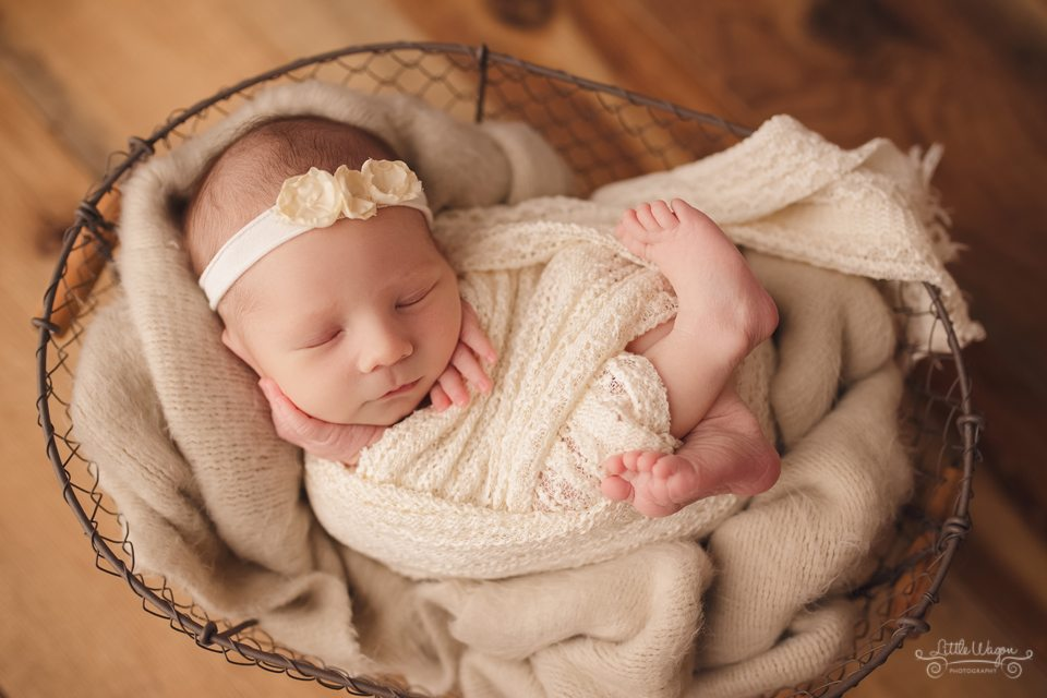 newborn photography Ottawa, Ottawa newborn photographers