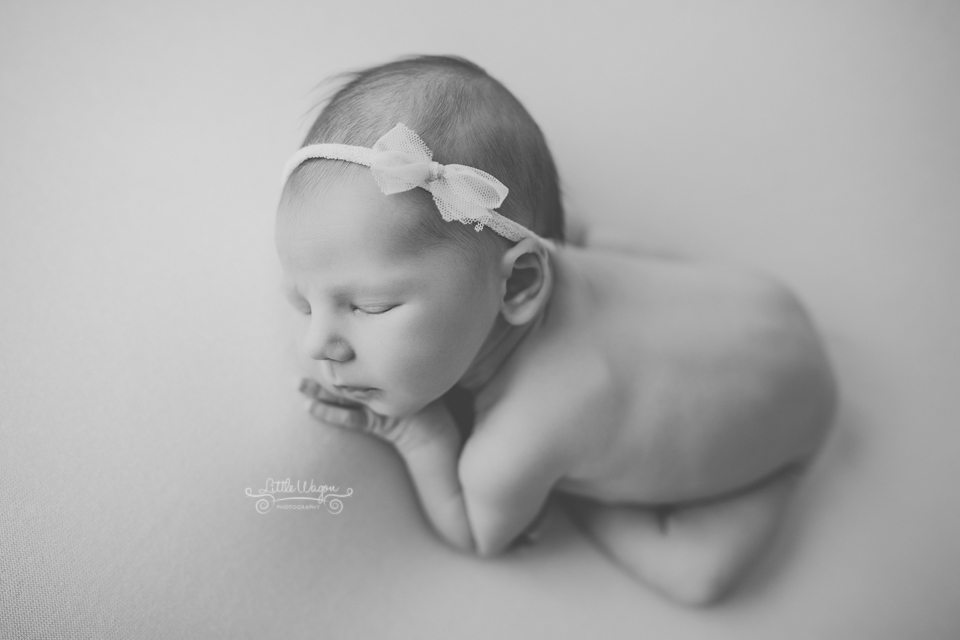 newborn photographer Ottawa, Ottawa newborn photography
