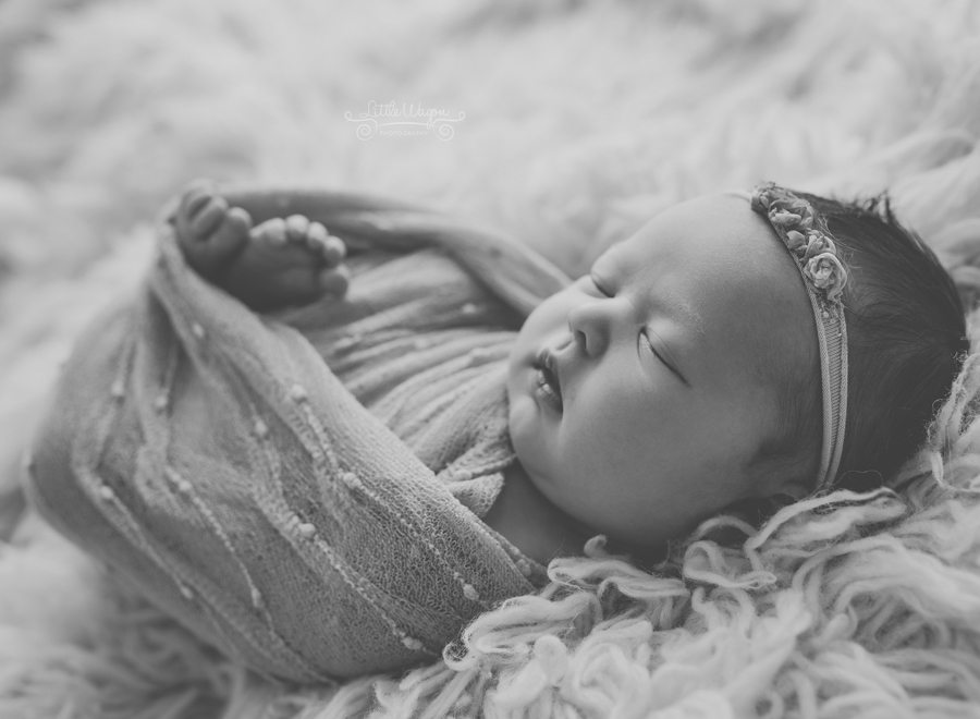 newborn photography Ottawa, baby photographers, Little Wagon Photography