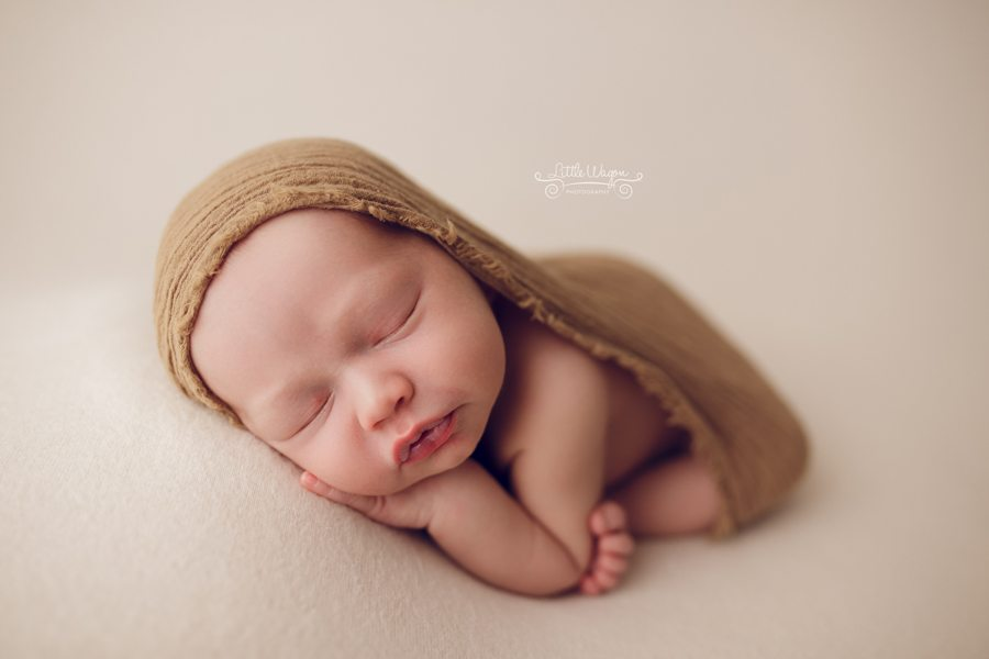 newborn photography, newborn photographer ottawa