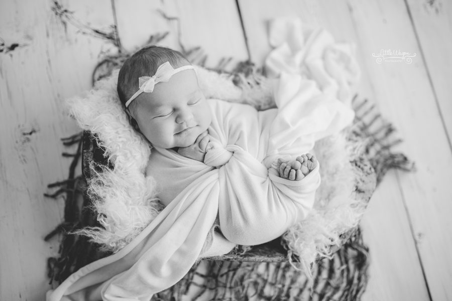Ottawa newborn photographers, newborn photography Ottawa