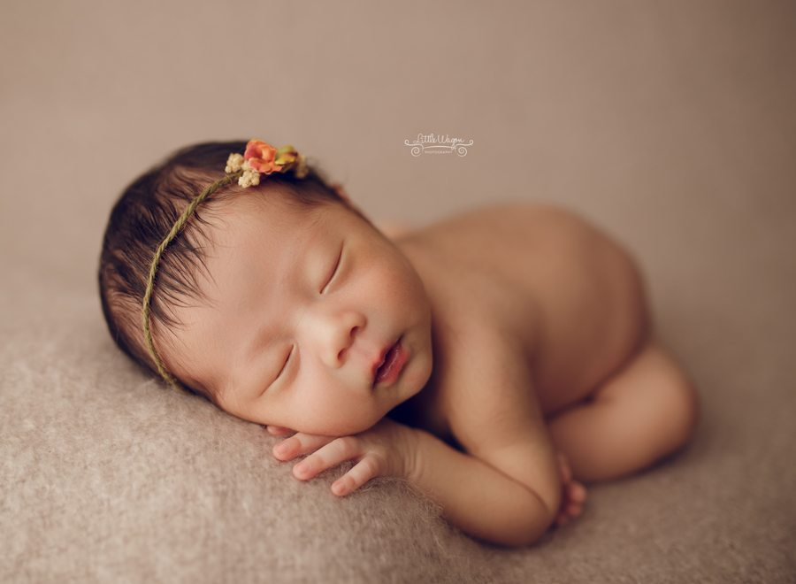 newborn photographer Ottawa, newborn photographers