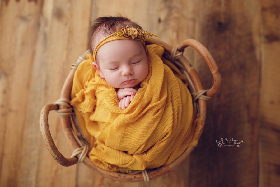 newborn photography, newborn photographer, Ottawa newborn photographer
