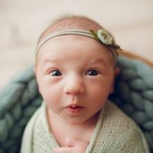 babygirl, newborn photographer ottawa