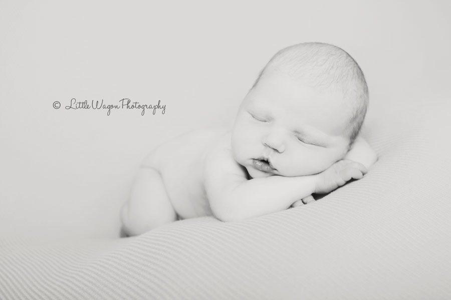 newborn photographer ottawa
