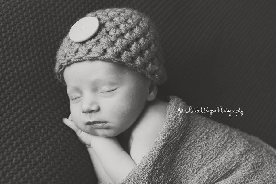 newborn photography in ottawa