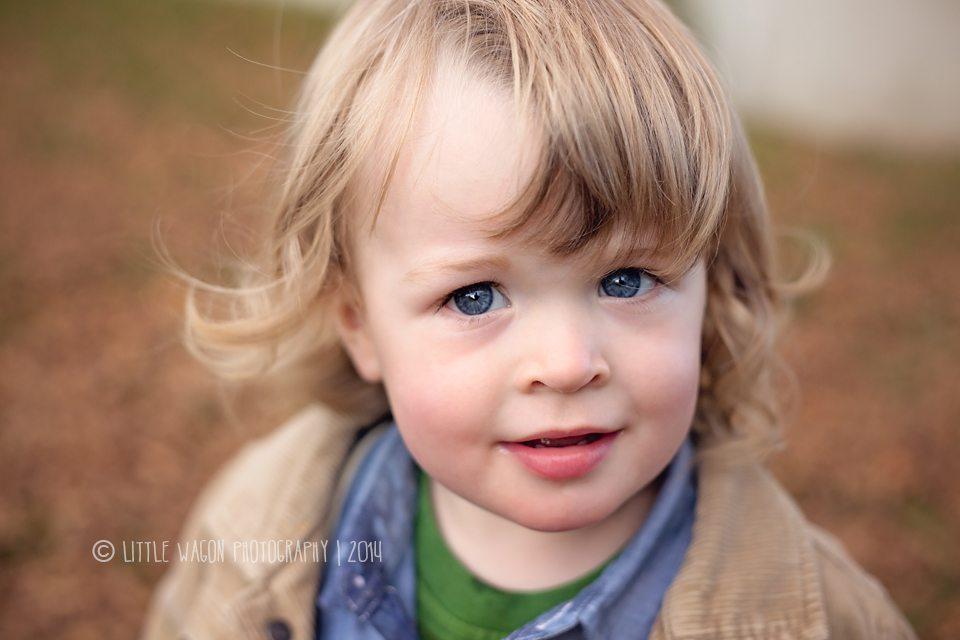 Little Wagon Photography