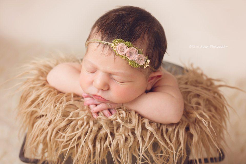 best newborn Photographer Ottawa