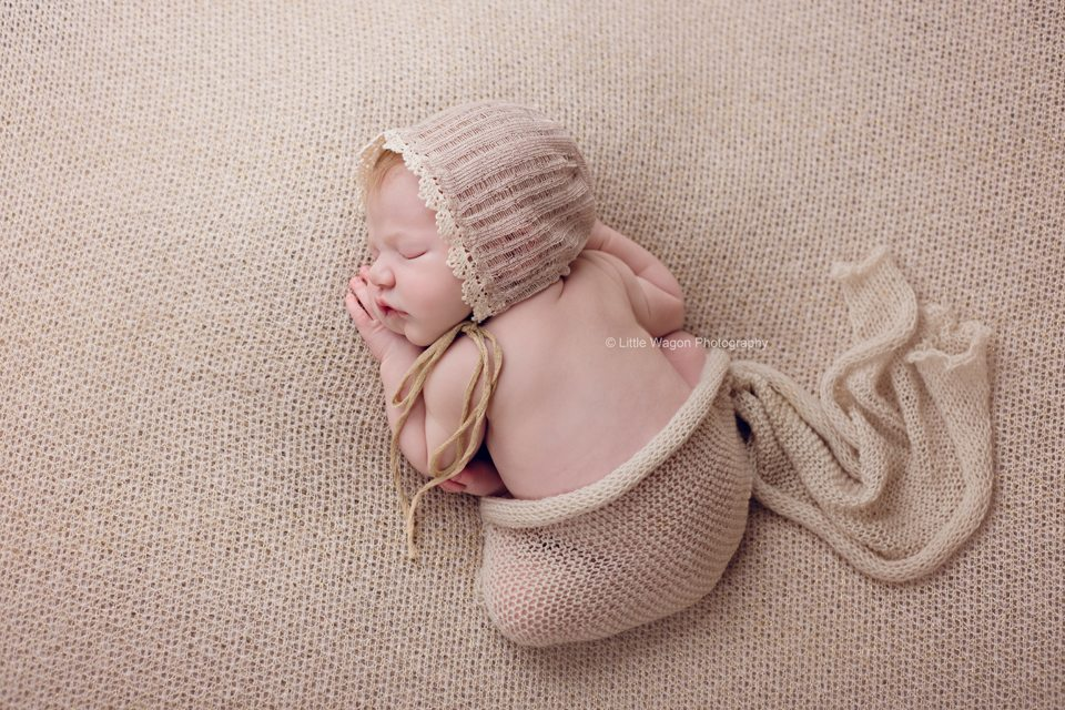 Ottawa's best newborn photographers