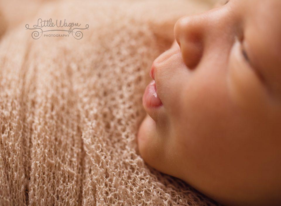 best Ottawa baby photographer
