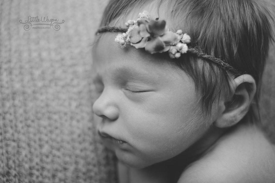 baby photography Ottawa, Ottawa baby photography