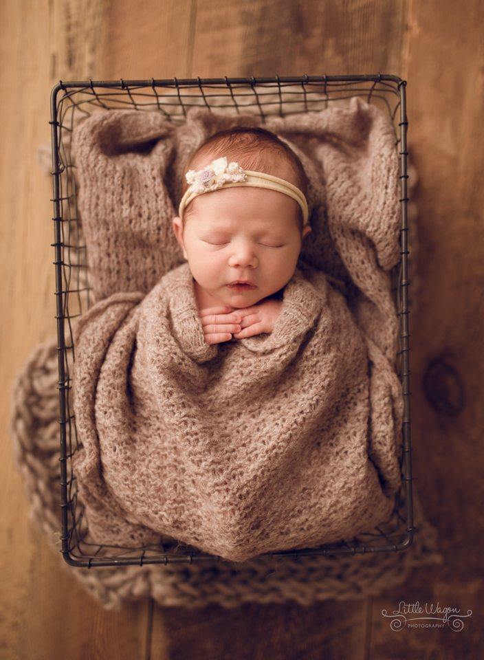 newborn photography Ottawa, Ottawa newborn photographers