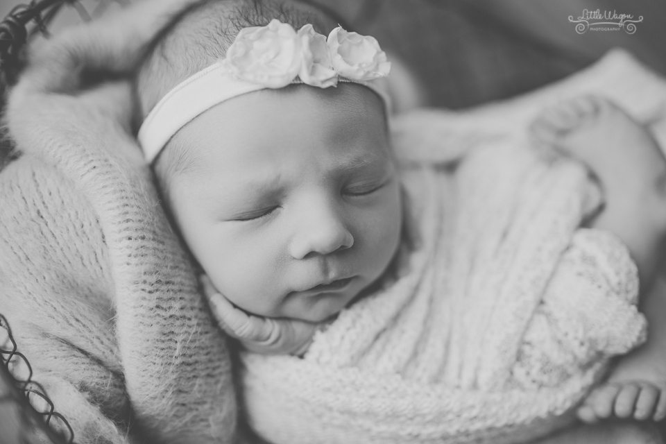 newborn photographer Ottawa, Kanata newborn photographers