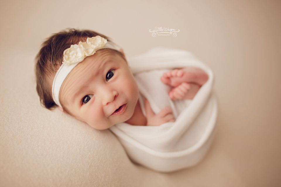 best newborn photographer Ottawa, Ottawa's best newborn photographers