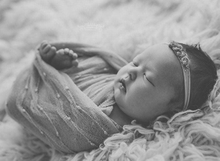 newborn photography Ottawa, baby photographers, Little Wagon Photography