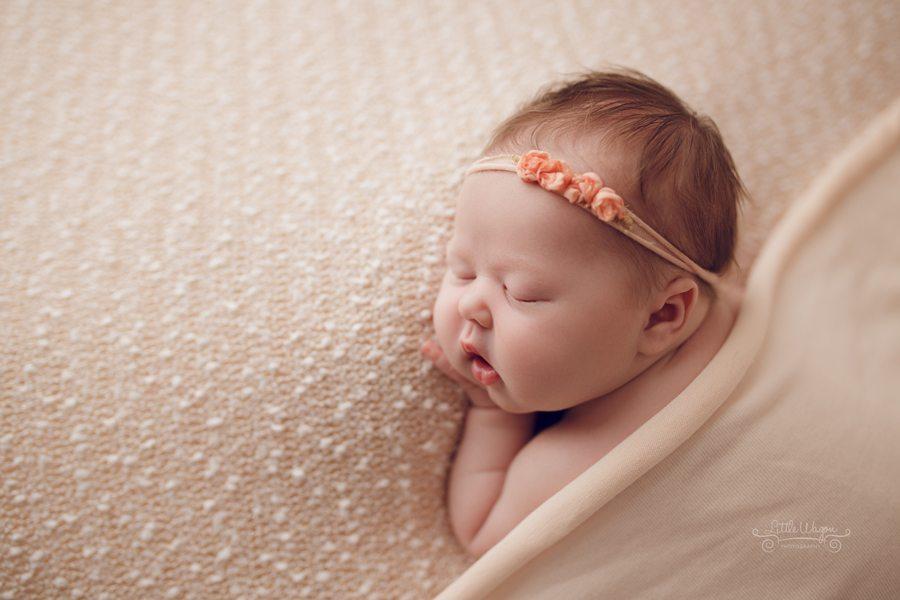 Ottawa photographer, best baby photographer