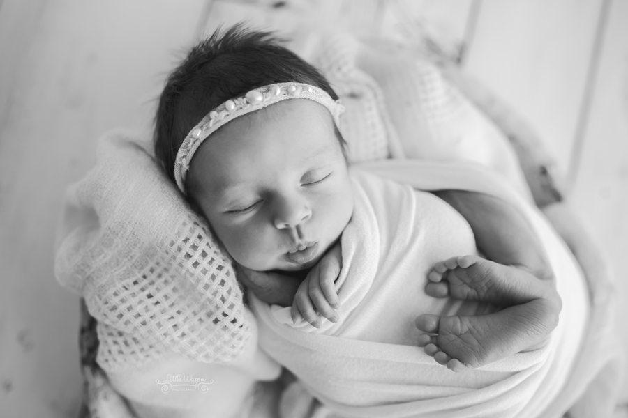 Ottawa newborn photography, newborn photographer
