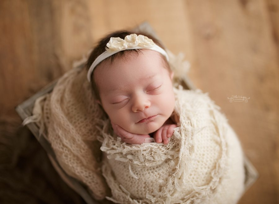 newborn photographers near me, Ottawa newborn photographers