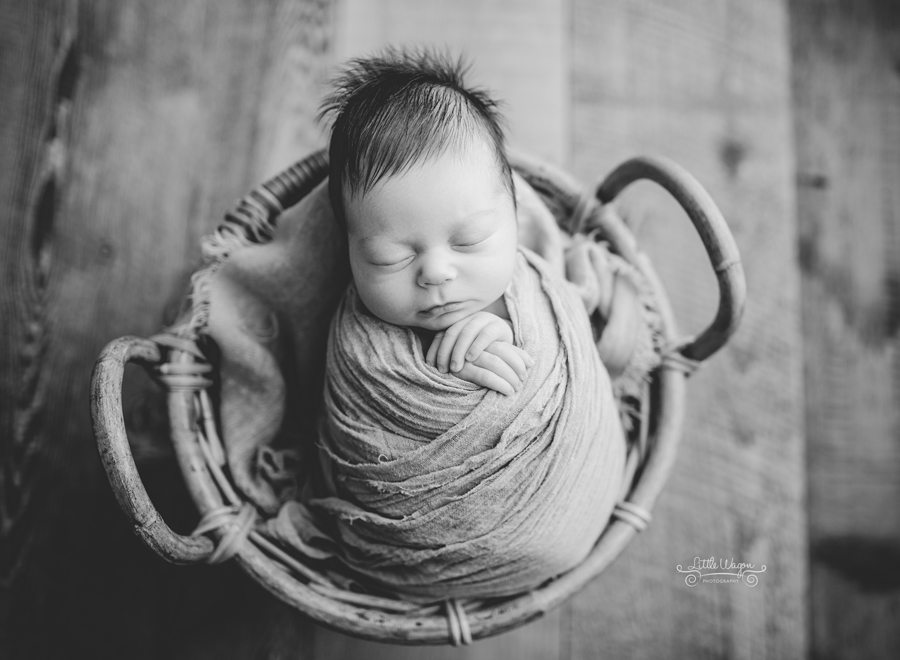 newborn photographer ottawa, newborn photography