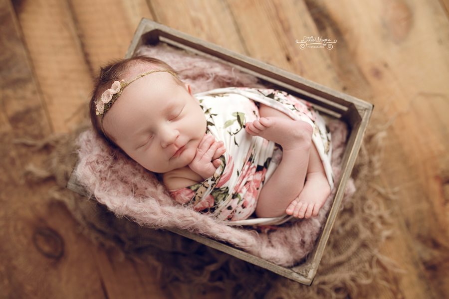baby in a bucket, newborn photography ottawa